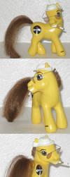 Hunter S. Pony by sarixthelost