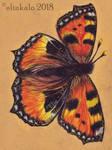 Fly fly little Butterfly by elinkalo