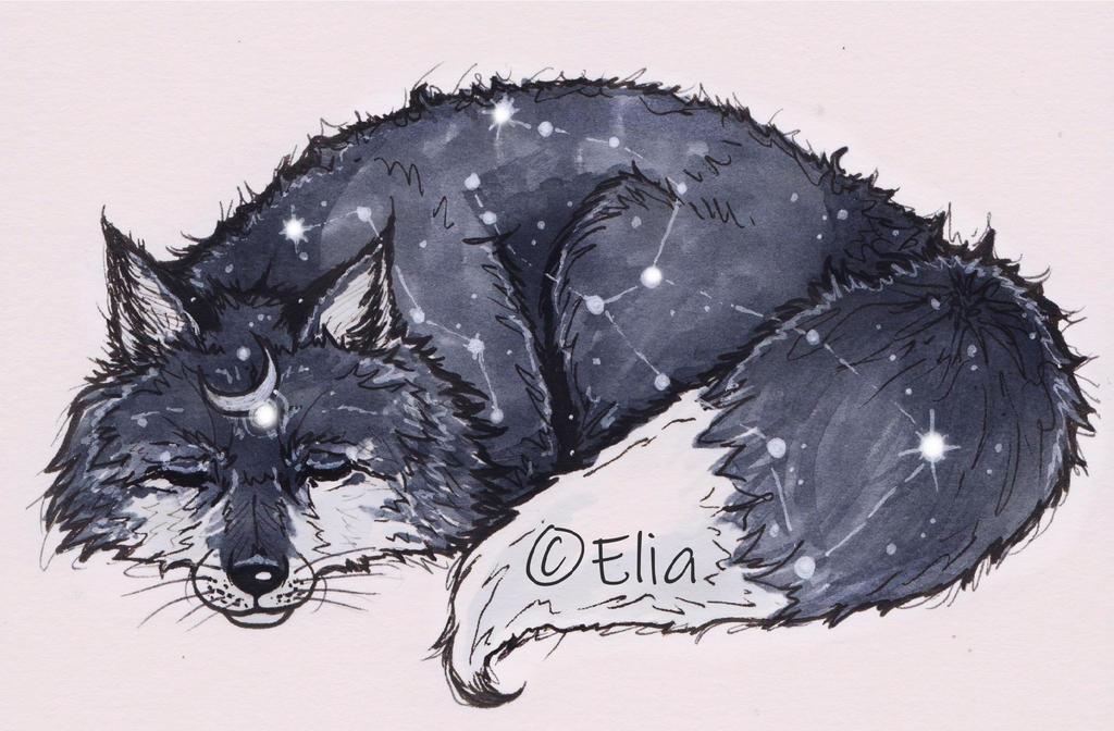 Sleepy VulpineWolf