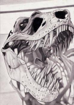 T.Rex Skull