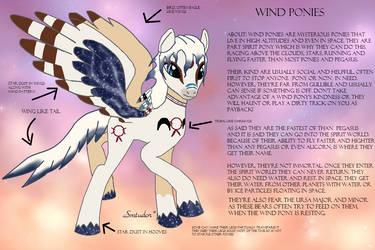 Wind Pony Ref Sheet (Semi Open PLEASE READ!)