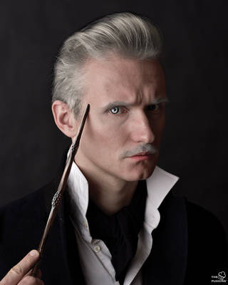 Grindelwald by ThePuddins