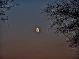 missing moon by CrimsonStar1