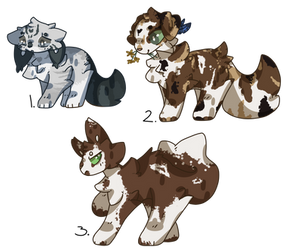 Warrior cats Generator Adopts 2 [1/3] by MoonlyCloud