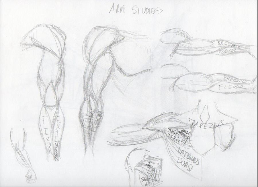 Sketchdump 020 by Rixks
