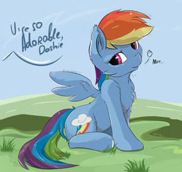 Adorable dashie