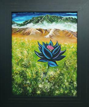 Framed Black Lotus