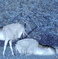 Unicorns by materialshadow