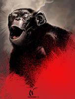 Monkey by Nicoob