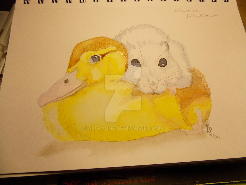 duckling and hamster by Allraune