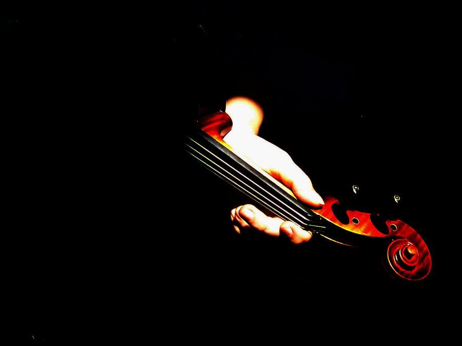 The violin    by Fanta...