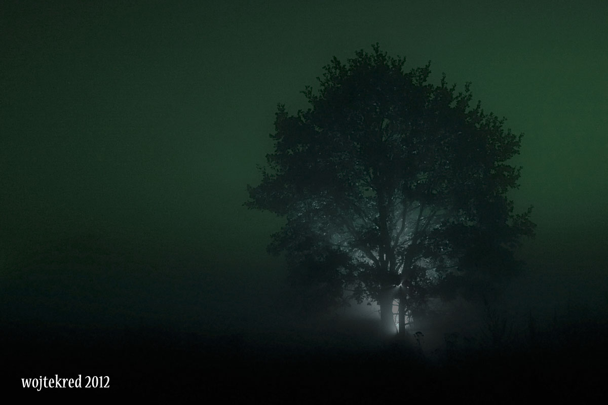 night shot by psychodelic-candy