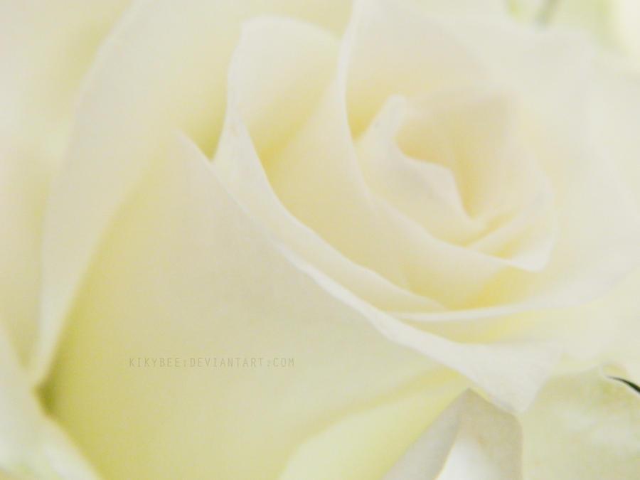 White Dream by KikyBee