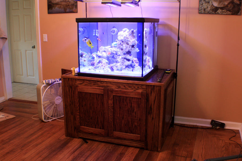 Oak fish tank stand by tapped creations on deviantart for Creation stand
