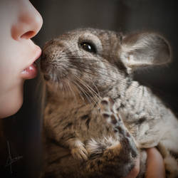 Kiss by armene