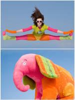 Elephants can fly by armene