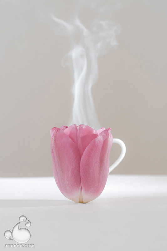 najromanticnija soljica za kafu...caj - Page 4 Tea_party_by_armene-d2o5g31