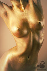 Antique Gold by armene