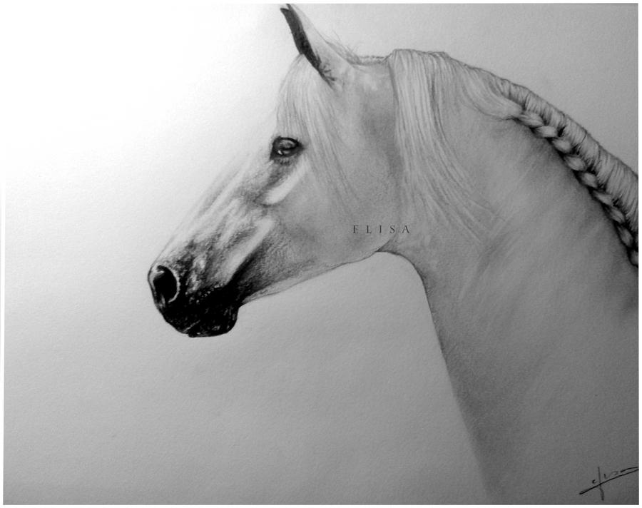 Horse by Twist-Again