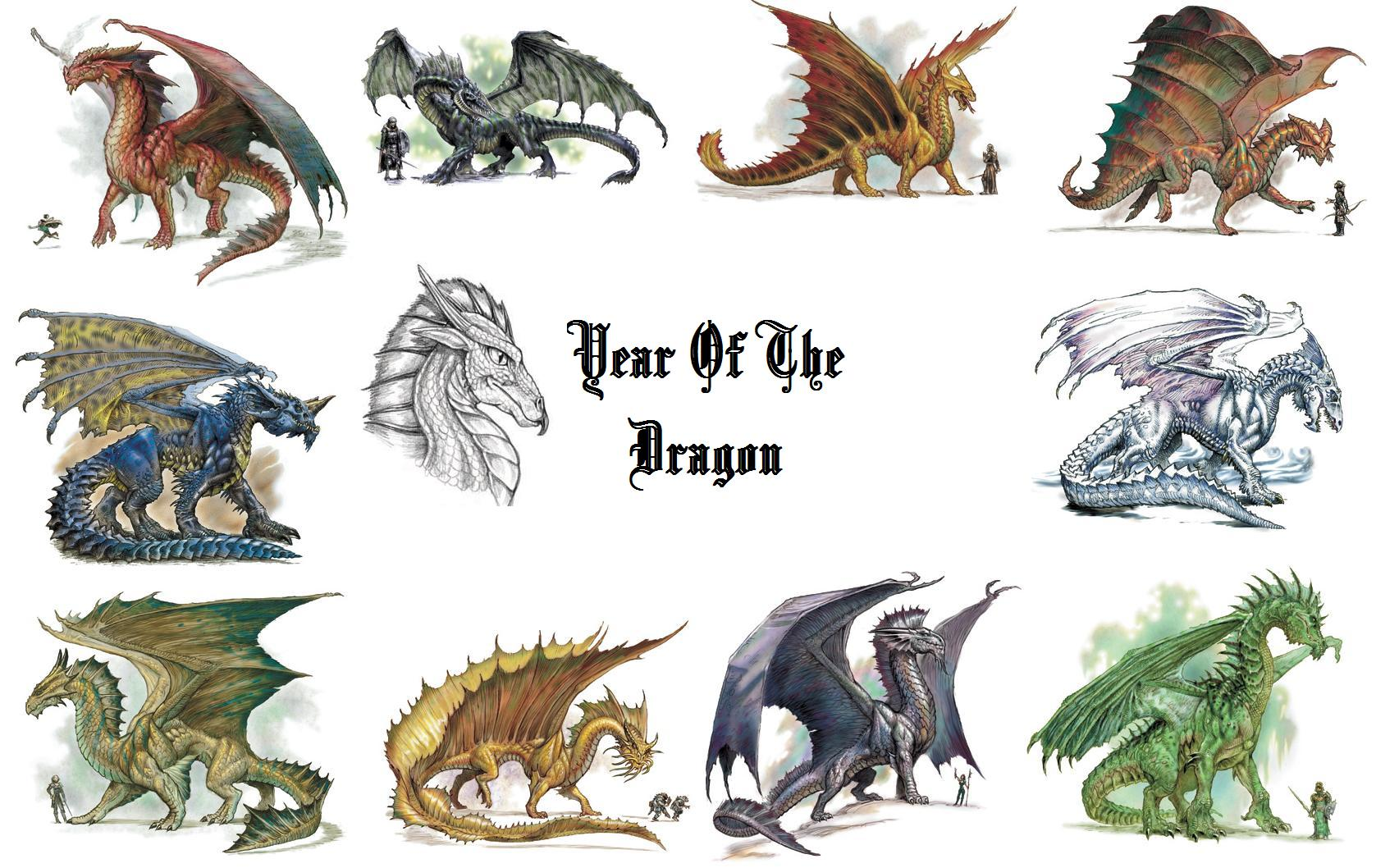 year of the dragon wallpaper by dragonsheart87