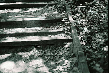paths of least resistance