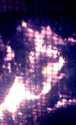 Kaiju Raymundra within the fire