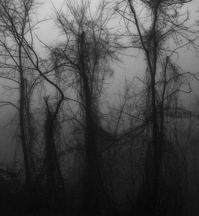 Winter Sadness by BranislavFabijanic