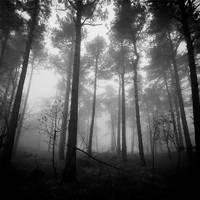 broken dreams by BranislavFabijanic