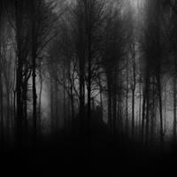 Secret Place by BranislavFabijanic