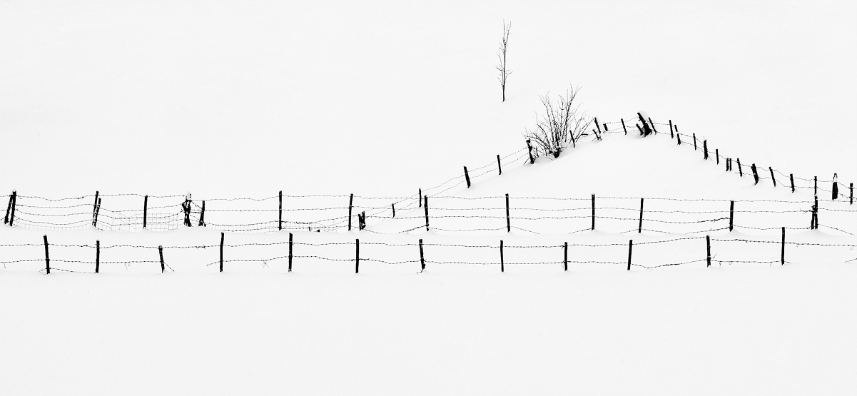 Fence by BranislavFabijanic