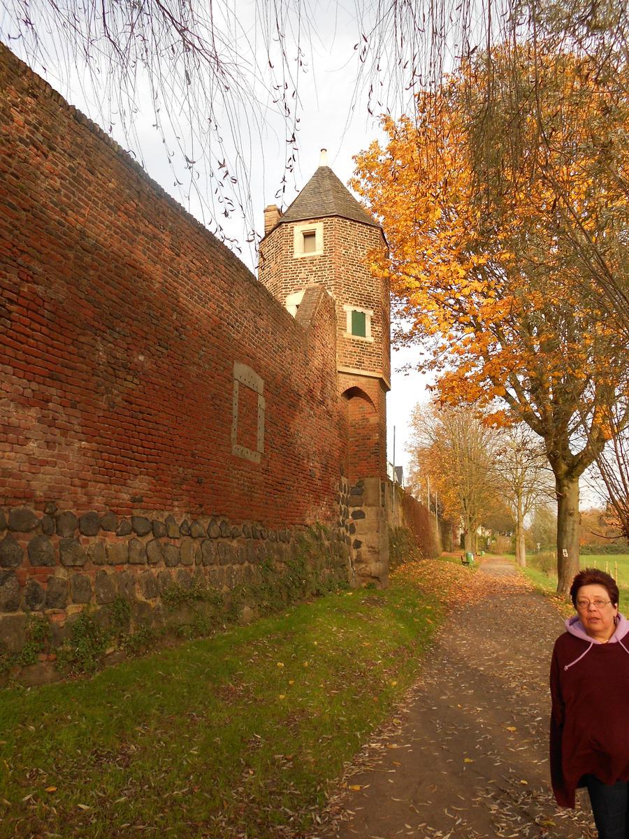 Rhine wall at Zons by Blyddyn