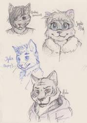 More Cat Practice by PrettyOkayMrFox