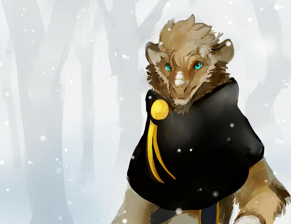 Wild Card: Winter