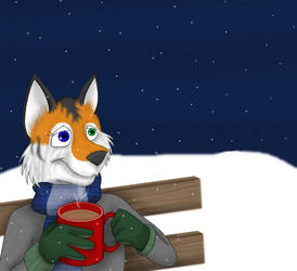 When it's cold outside... by liongoalkeeper