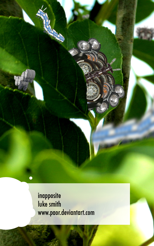 Innaposite by PaOR