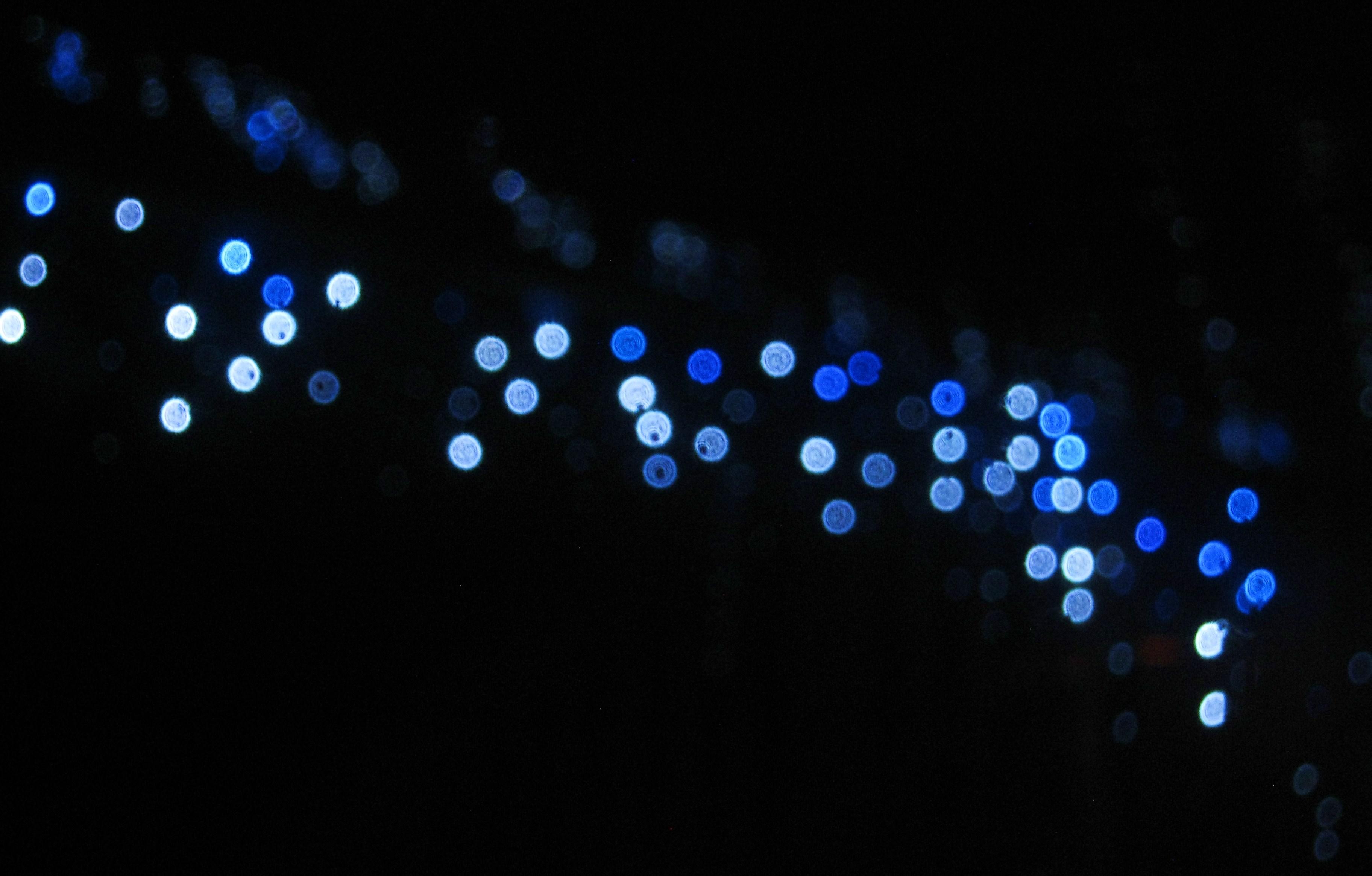 Night Lights By Blueeire On Deviantart