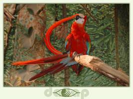 parrot by da8ap