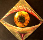 eye with black sclera