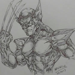 Wolverine by Nevzat-M