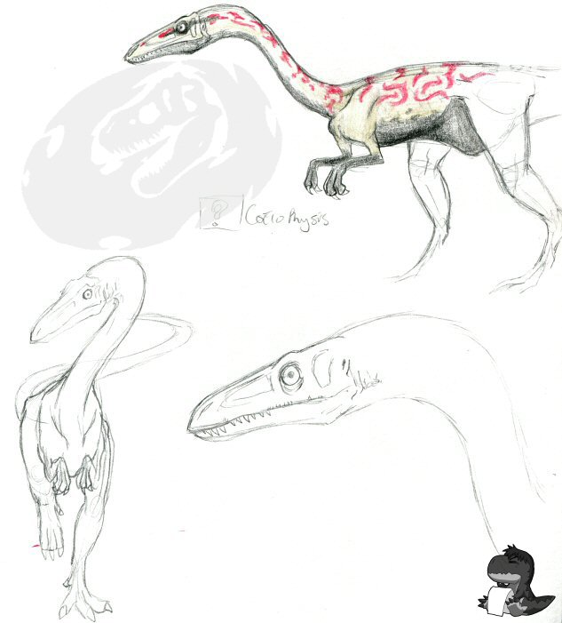 Dinosaur King Coelophysis By Sketchasaurus