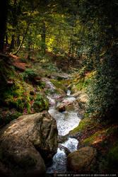 Ninglinspo - Fairytale River by Luna-Nera-x