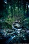 Ninglinspo - Mystic River