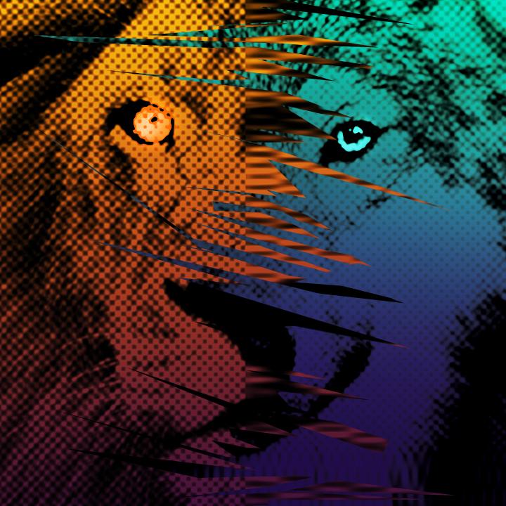 Lions vs. Wolve...