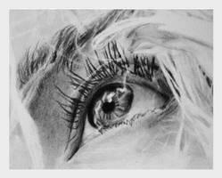 an eye by kadiliis