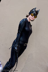 Catwoman 3 by Insane-Pencil