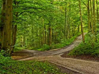 Crossroads after a night of rain               by zeitspuren