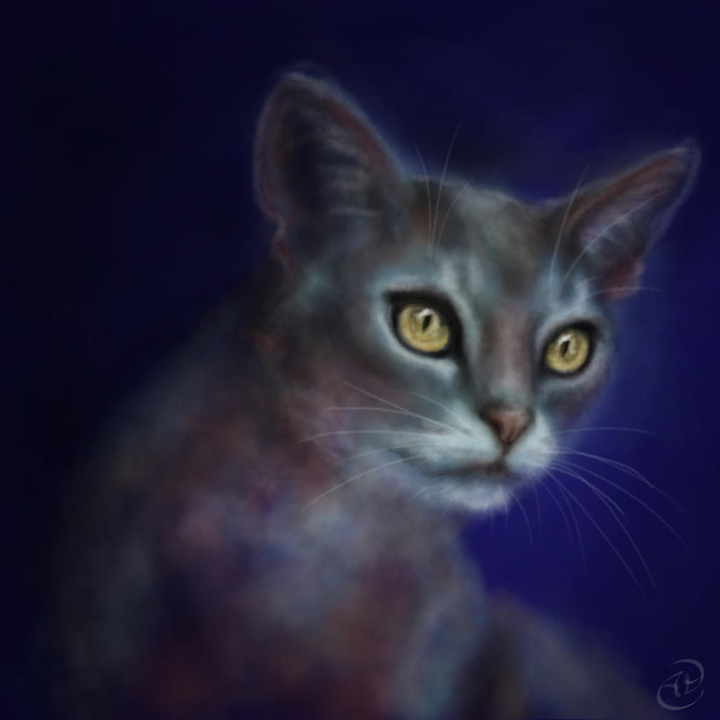 Cat - Digital painting in Photoshop by Anastasja-A-Art