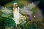 Fairies-walk by theogroen