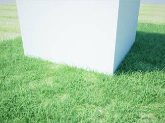 3D grass - Cinema 4D by jonny-rawkus