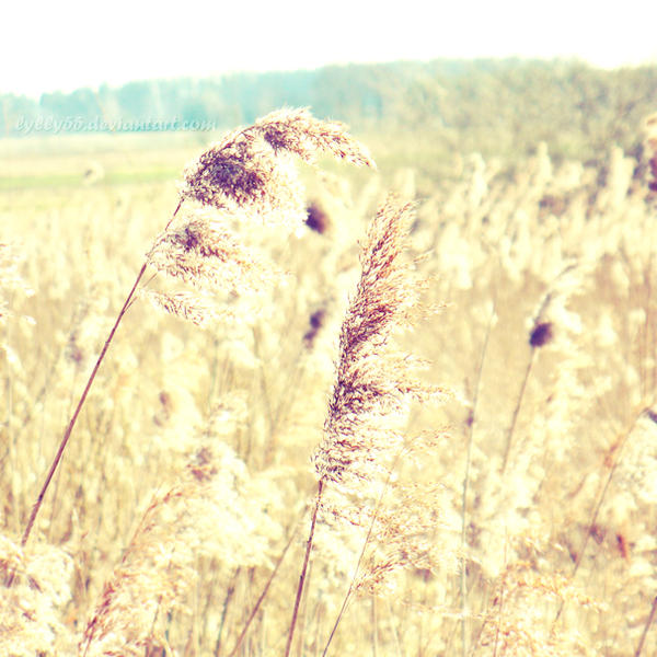 Breathe III by Lylly55